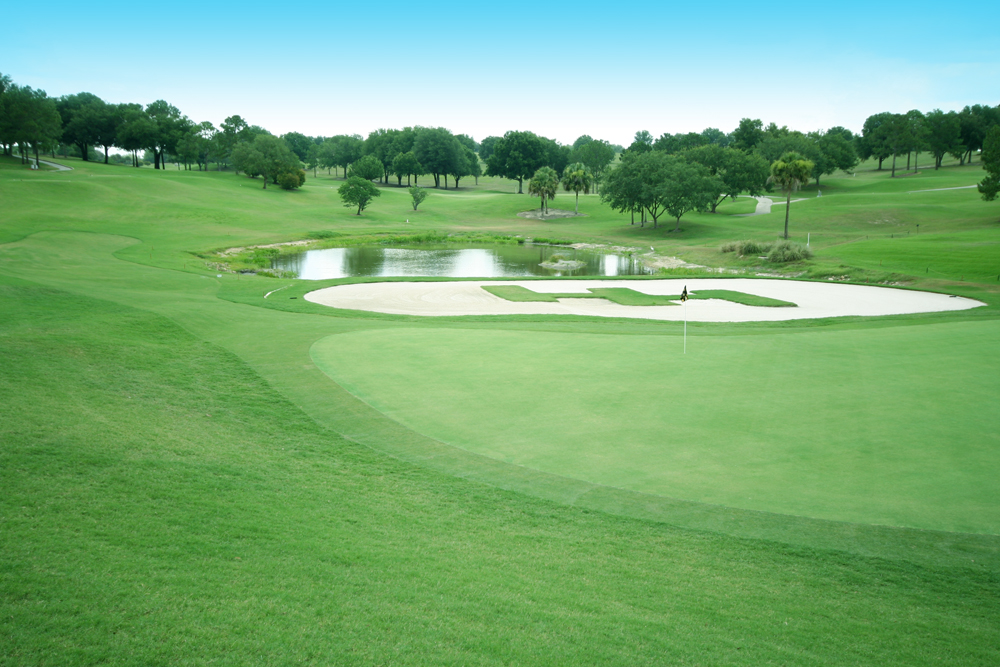 Consider, Florida amateur golf events Likely... The